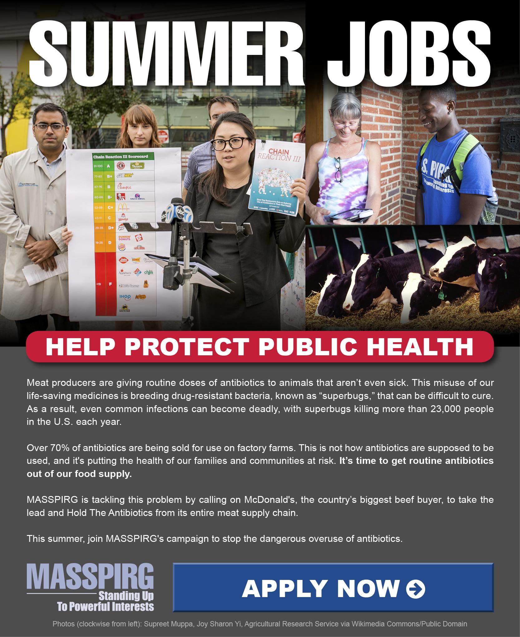 Summer Jobs. Help Protect Public Health.