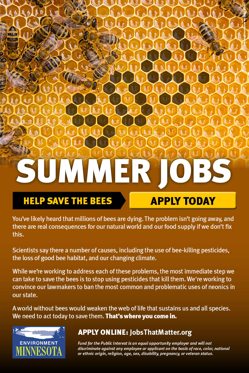 Summer jobs to help save the bees. APPLY TODAY.