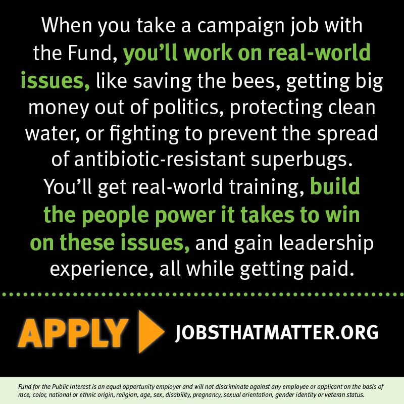 The Fund is hiring people to help tackle some of the country's most pressing problems, like saving the bees and stopping the overuse of antibiotics on factory farms. Apply today.